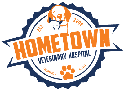 HOMETOWN-website-logo (1)